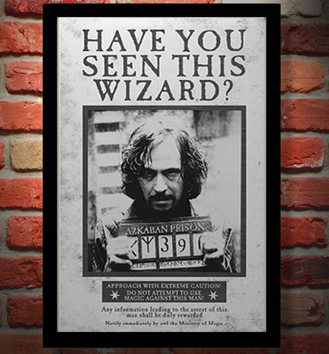 photo regarding Have You Seen This Wizard Printable identified as Harry Potter Replicas